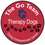 Go Team Logo Medium